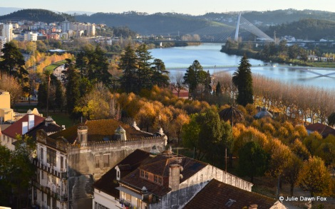 Old houses, autumnal rows of trees and the Mondego River